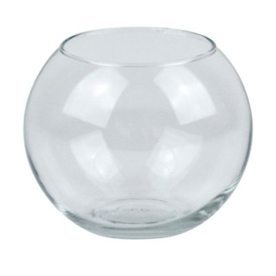 Globe Glass Fish Bowl